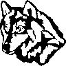 dan_wolf