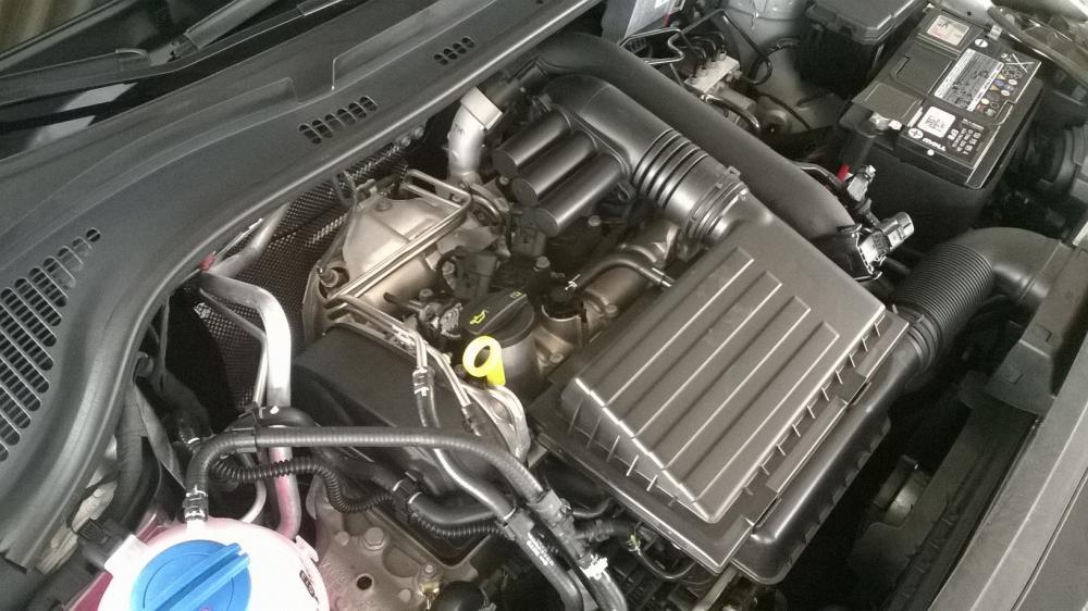 motor TSI rapid 2016.jpg